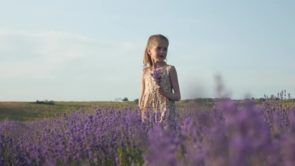 pretty child girl in a joyful mood. flowers in hand. countryside, lavender field at sunset