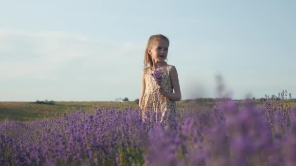 krásné dítě dívka v radostné náladě. květiny v ruce. venkov, levandulová pole při západu slunce