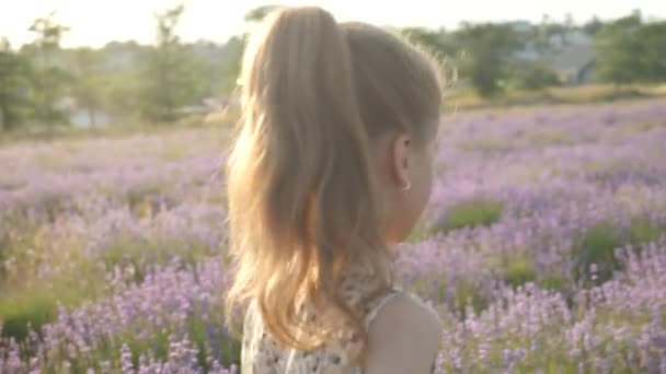 attractive little girl holiday in Provence. laughter and smiles feeling good, summer nature of Europe