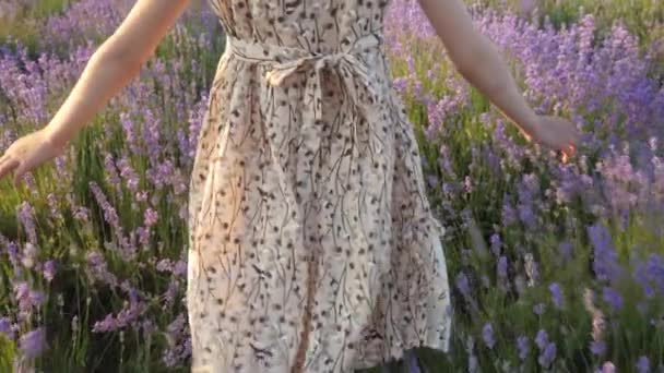 beautiful natural areas for relaxing. body part Rear view legs and hands small girl in the dress goes through flower field at sunset and gently touches flowers