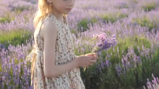 lifestyle in countryside little girl in a beautiful summer dress. harvesting summertime