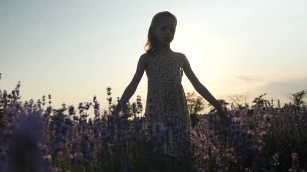 krásná scéna malá dívka hraje samostatně stojící v poli levandule květiny při západu slunce v paprsky slunce. koncept relaxovat