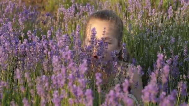 Közelkép aranyos kis lány ül a levendula virágok és belélegzése illat a virágok meleg nyári naplementében szembe. koncepció pihenés és kikapcsolódás