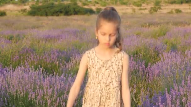 nice small Caucasian girl blonde walks nature in field of flowers. concept beauty and health