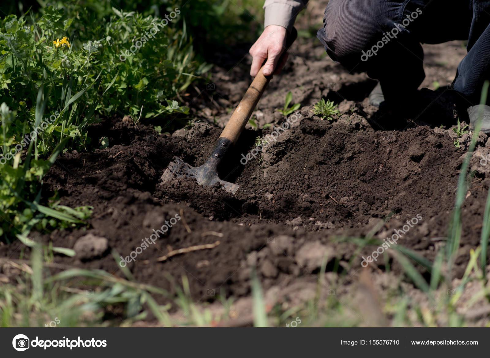 Uomo scava la terra con una pala — Foto Stock © ahfoto mail
