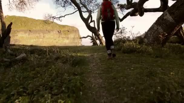 Hiker walking in coastal forest