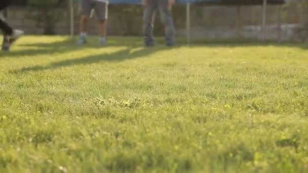 Děti hrají fotbal s míčem na trávě