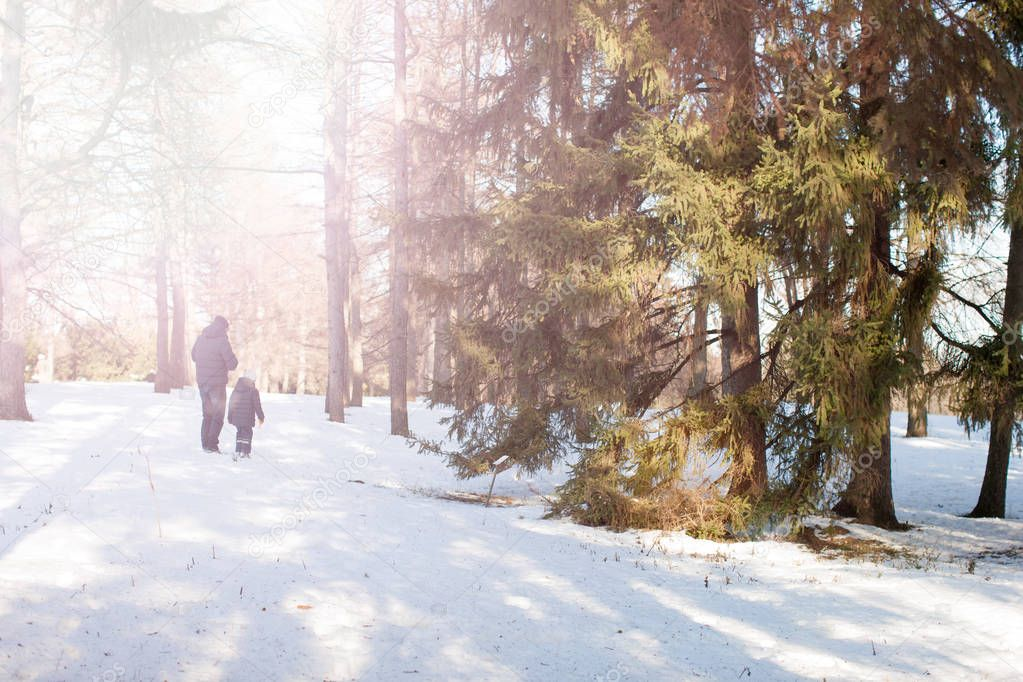 Father walking with son in winter forest