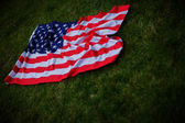 American flag on green grass. USA celebrating 4th of July. America patriotic symbol