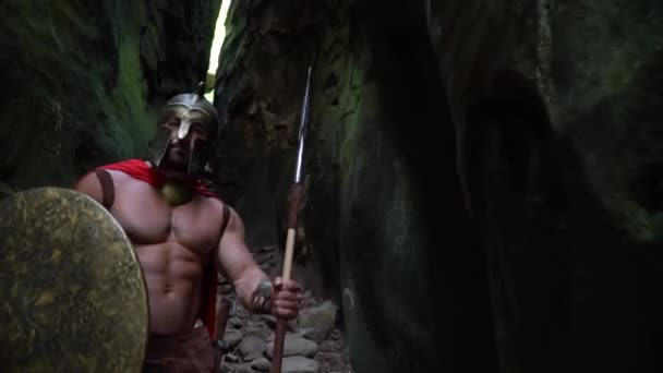 Guerriero medioevale nel bosco