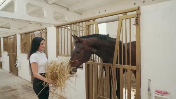 Žena krmící koně senem.