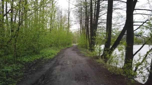 Procházka po polní cestě podél okraje lesa