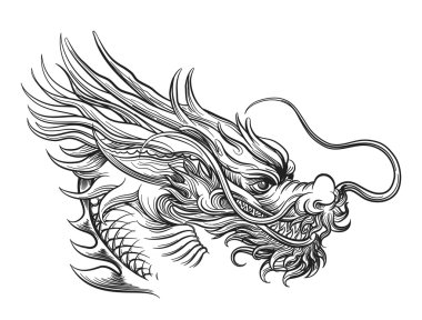 Hand drawn chineese dragon head