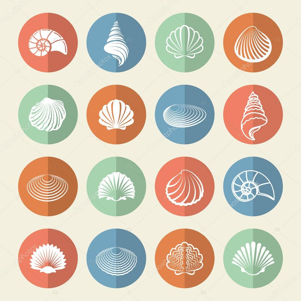 White sea shells icons set