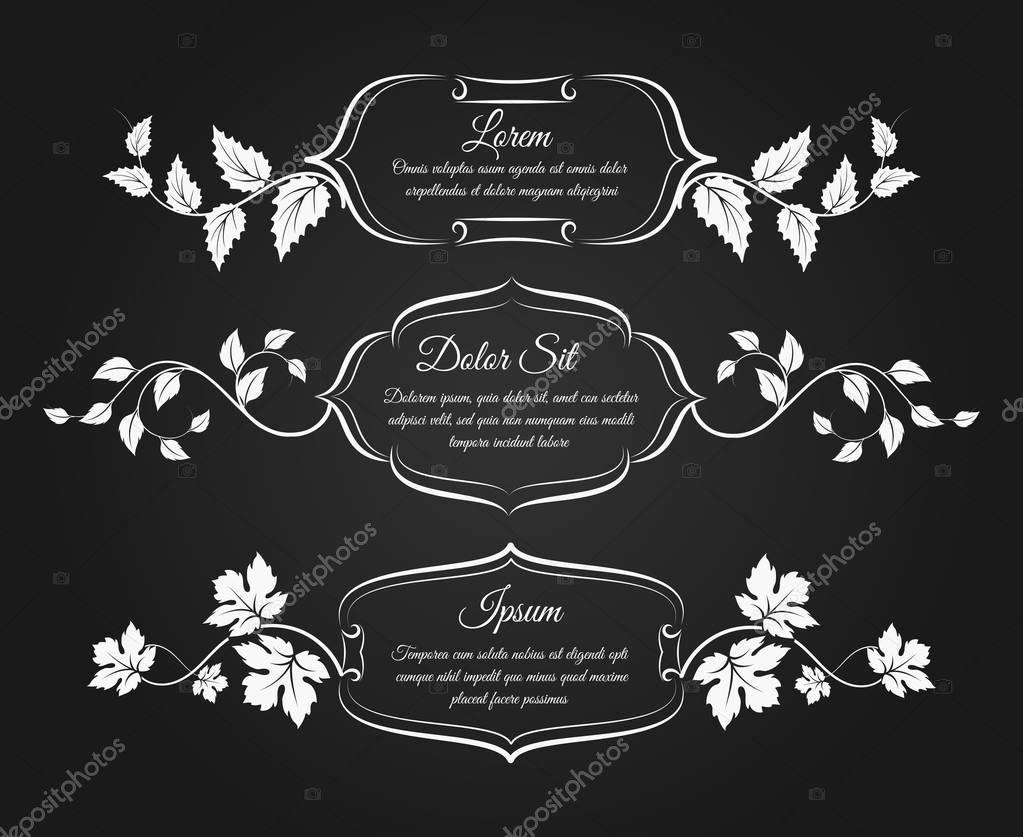 Vintage frames with floral decorative elements