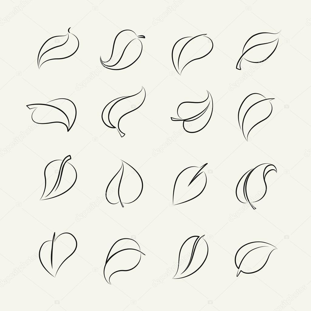 Outline sketch leaf set
