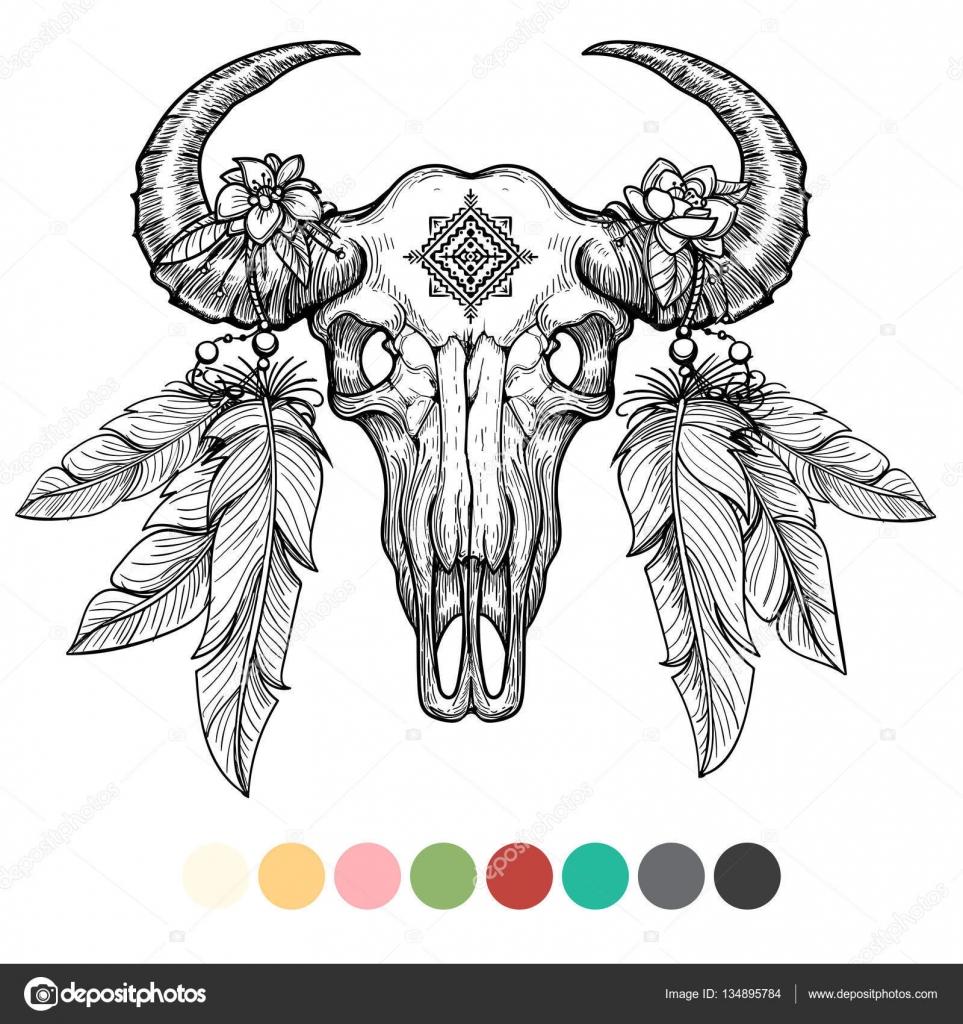 Cráneo de animal para colorear diseño — Archivo Imágenes Vectoriales ...