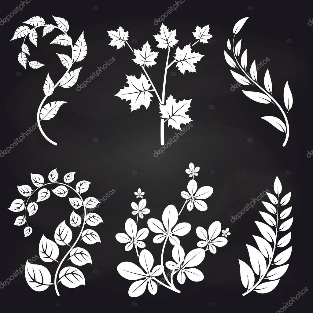 Decorative floral branches on blackboard