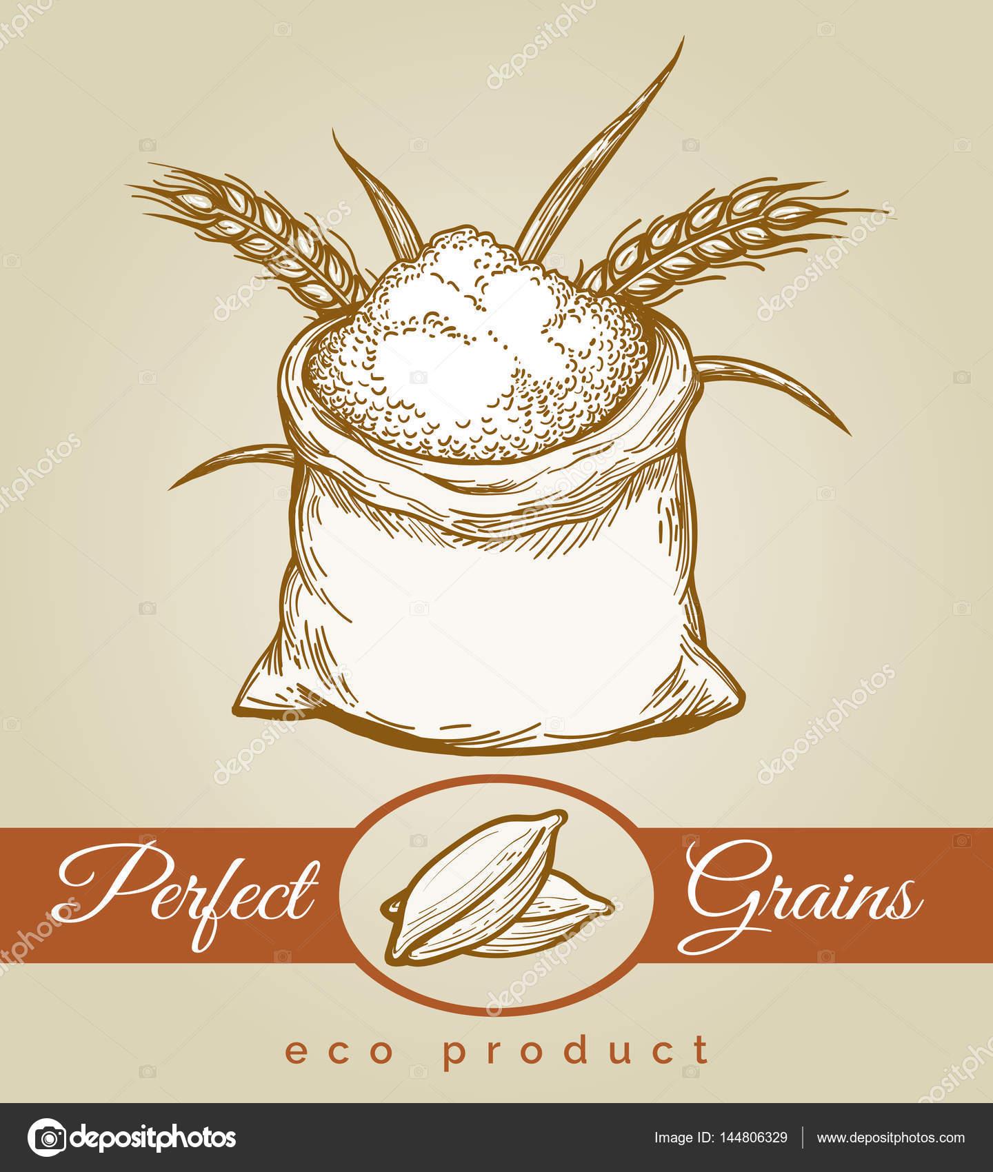 Eco κόκκων προϊόντος σκίτσο εικόνα — Διανυσματικό Αρχείο ... 9192774ab6c