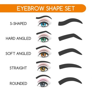 Women eyebrows shapes set