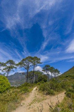 Cape Town sceneic mountain