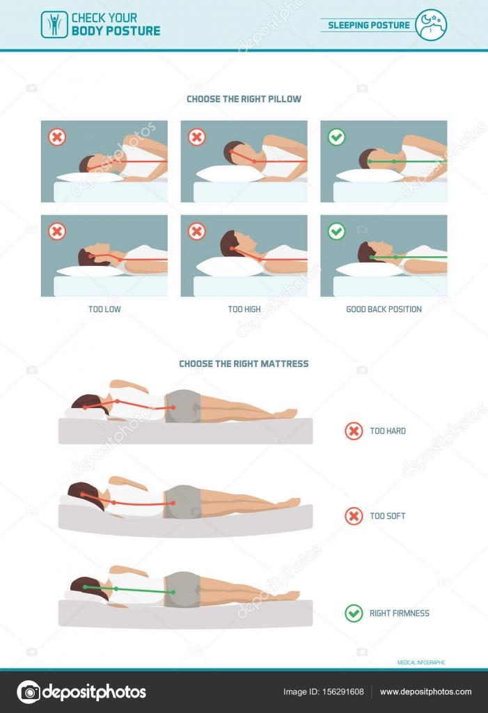 Correcta ergonomía para dormir - Vector de stock © elenabs..