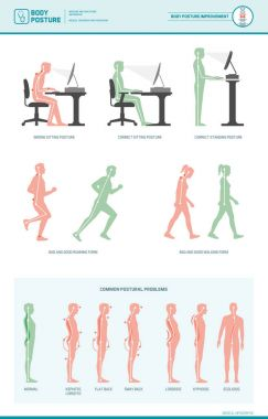 Body ergonomics infographic