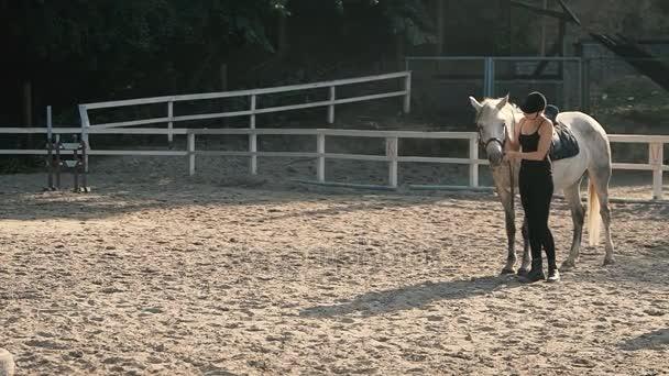 Jízda na koni v lese letní