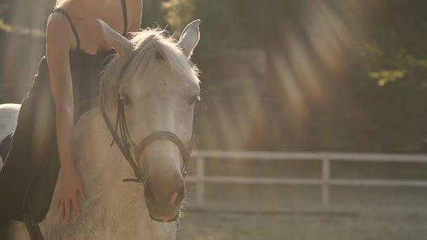 Jízda na koni na cvičišti