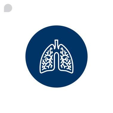 human lungs organ
