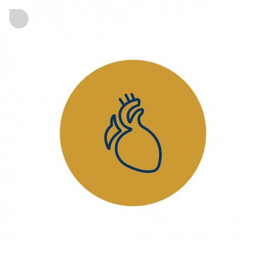 human heart organ icon