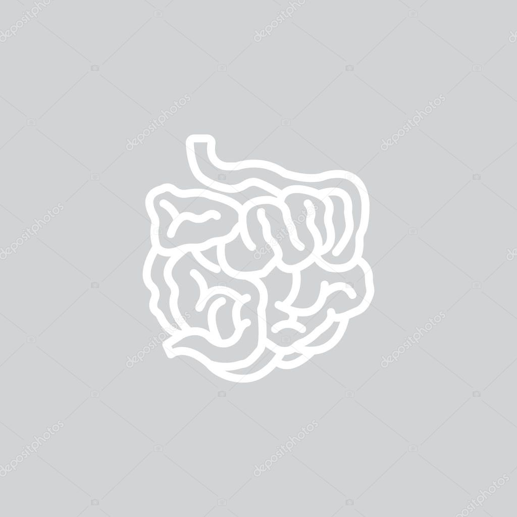 Großzügig Macht Sauber Anatomie Galerie - Anatomie Ideen - finotti.info