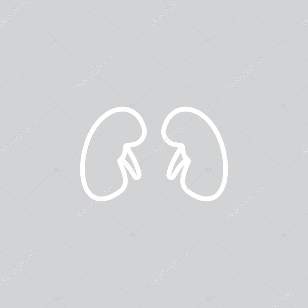 Anatomie web pictogram — Stockvector © Mr.Webicon #129117732