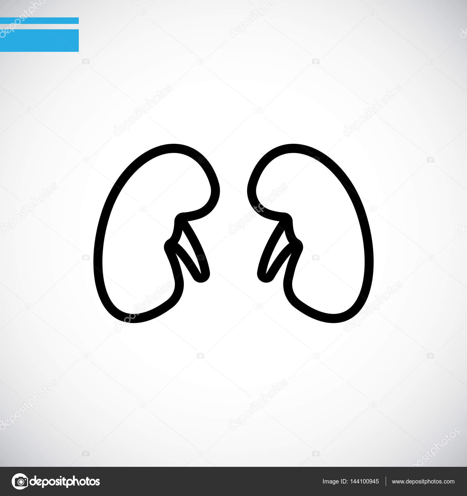 icono de la web de anatomía — Vector de stock © Mr.Webicon #144100945