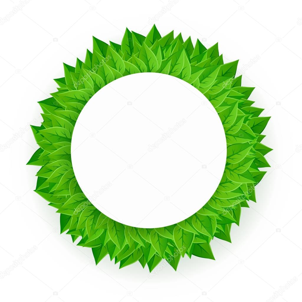 Circle of green leaves with empty place for text or illustration. Vector design element on white background.