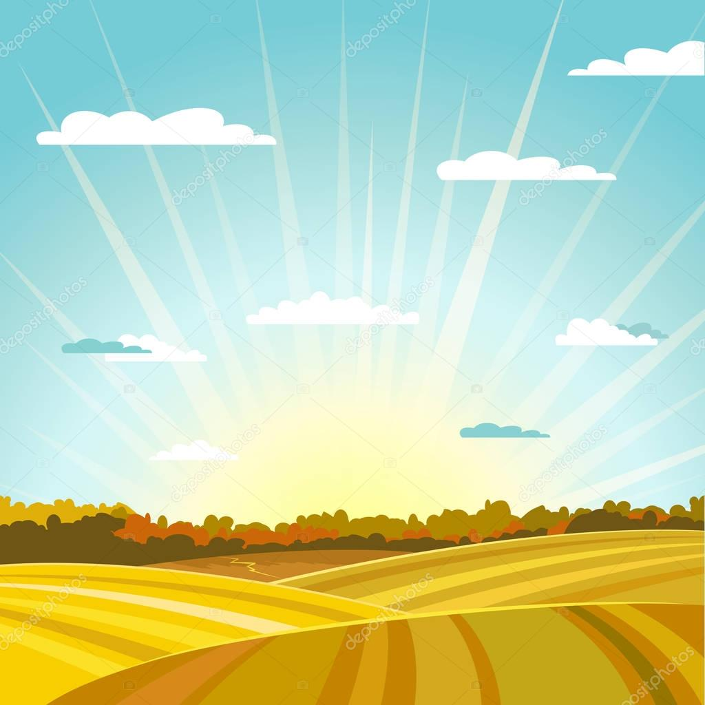 Natural country fields and forest autumn landscape background. Sunrise or sunset. Vector illustration.