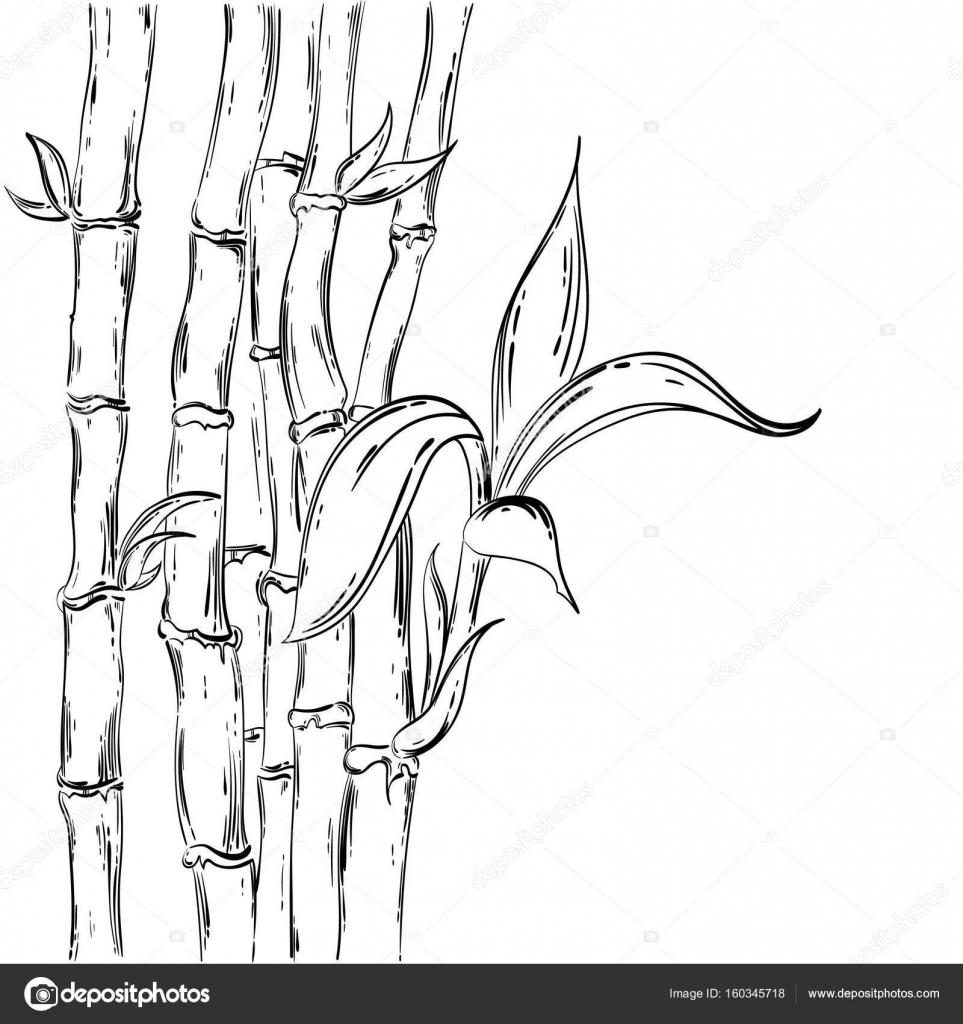 Abstrakte Vektorgrafik Mit Bambus Stockvektor C Tyhinka 160345718