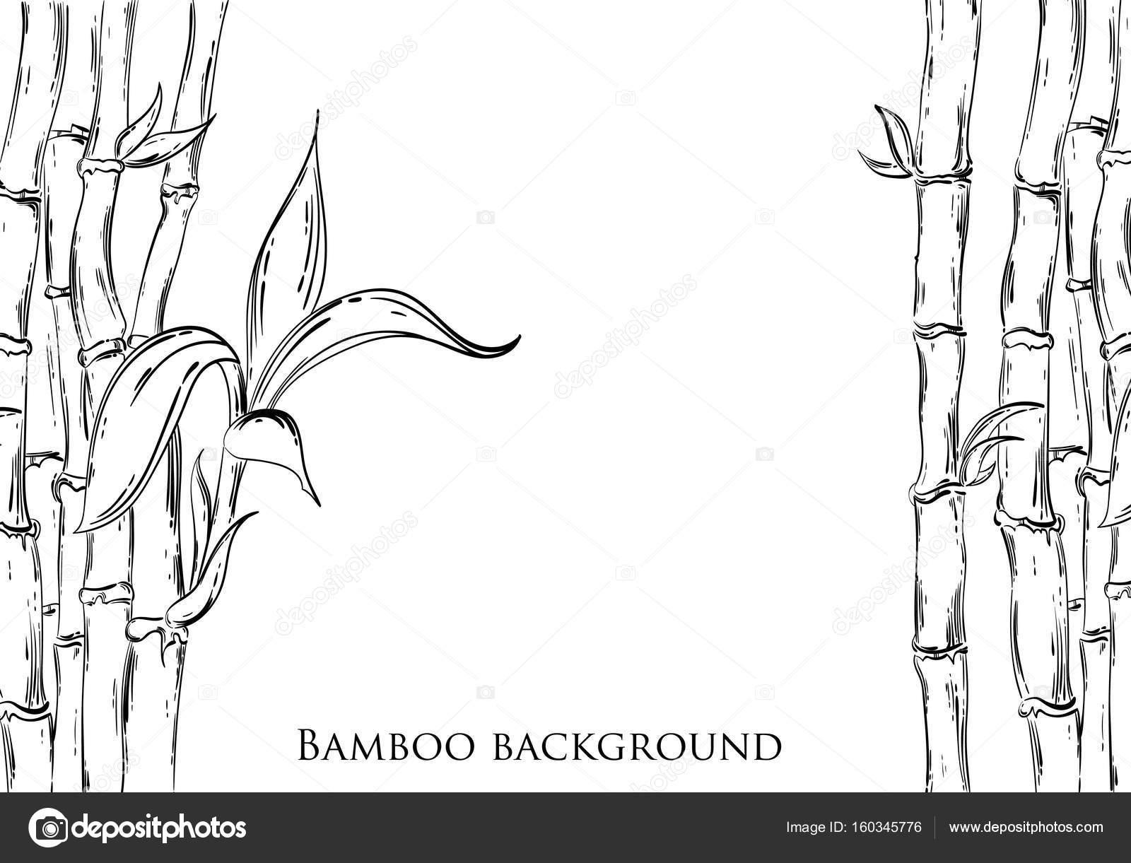 Abstrakte Vektorgrafik Mit Bambus Stockvektor C Tyhinka 160345776