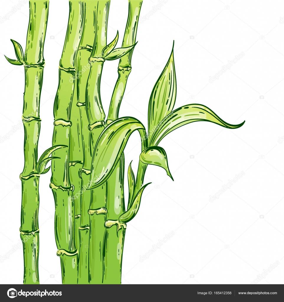 Abstrakte Vektorgrafik Mit Bambus Stockvektor C Tyhinka 165412358