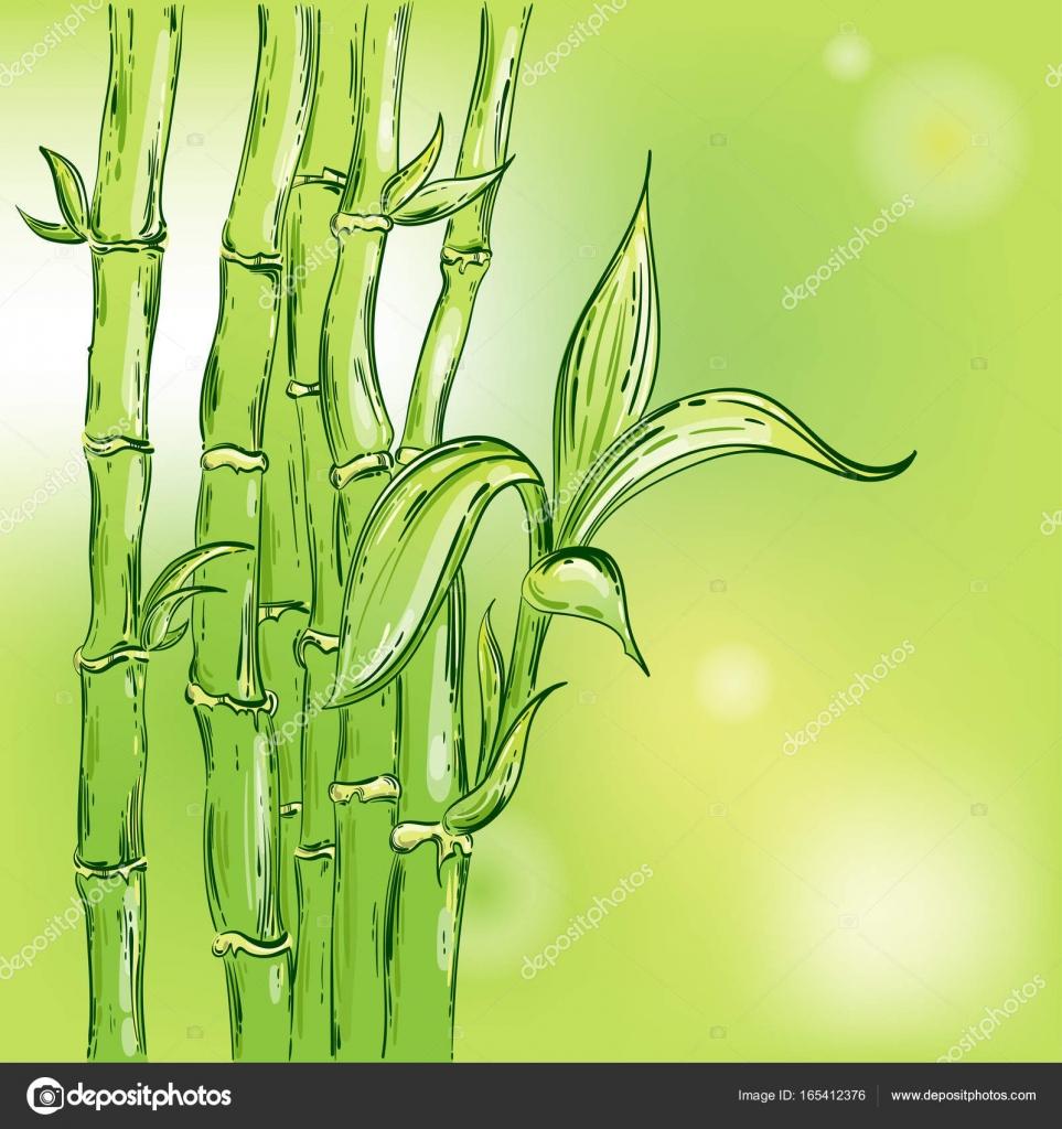 Abstrakte Vektorgrafik Mit Bambus Stockvektor C Tyhinka 165412376