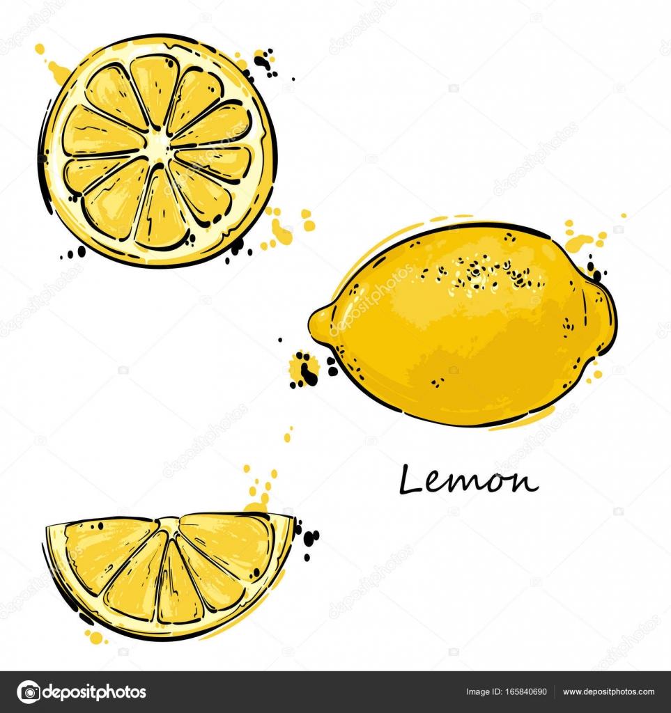 レモンのベクトルの抽象的なイラスト ストックベクター Tyhinka
