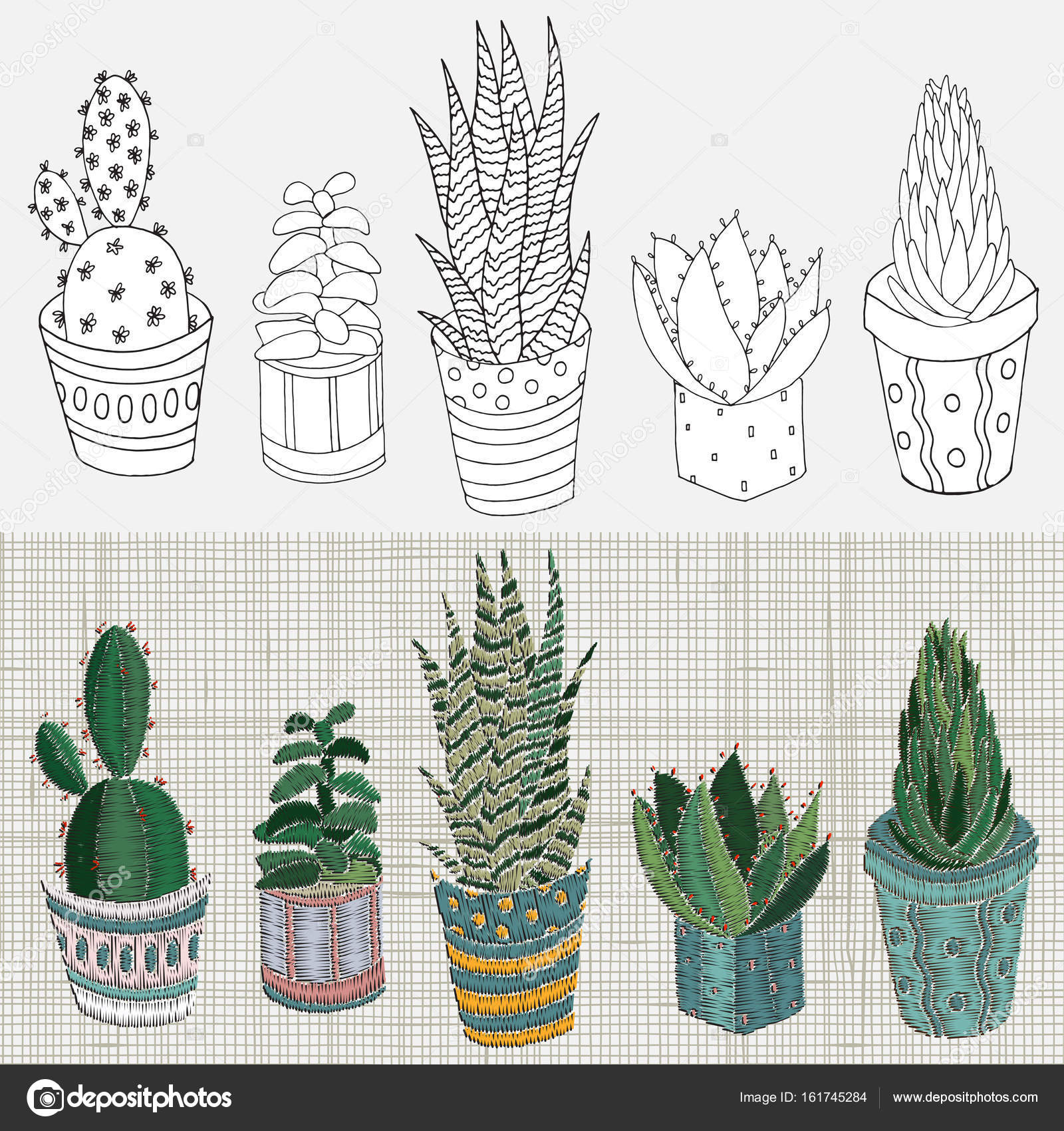 Unikalne Wzory haftu z sukulenty i kaktusy — Grafika wektorowa © imhope UU84
