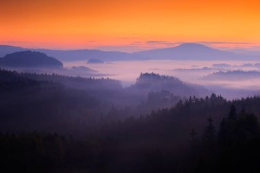 Hills and trees with foggy morning