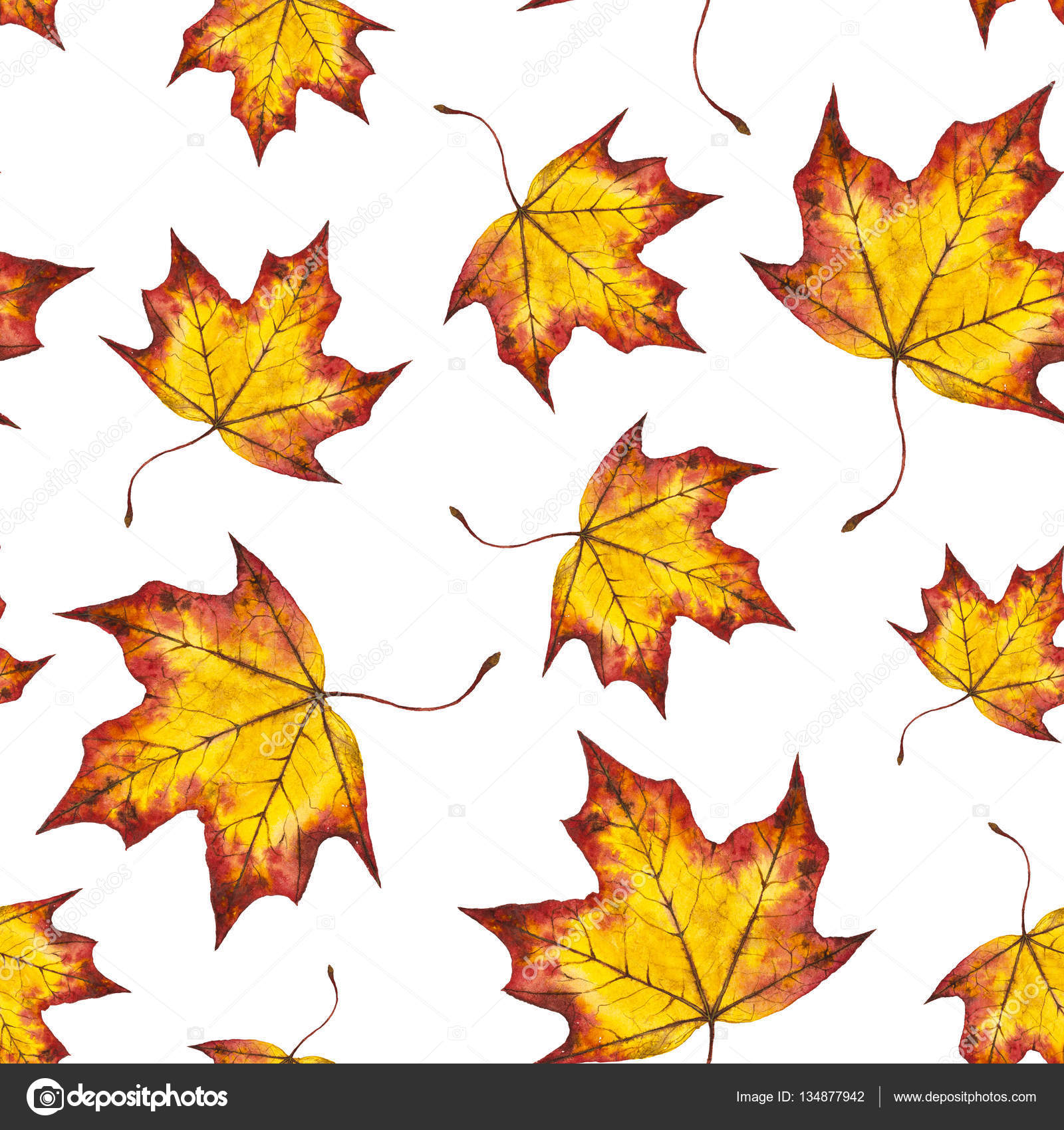 Watercolor Seamless Pattern Autumn Leaves Of Maple Stock Photo