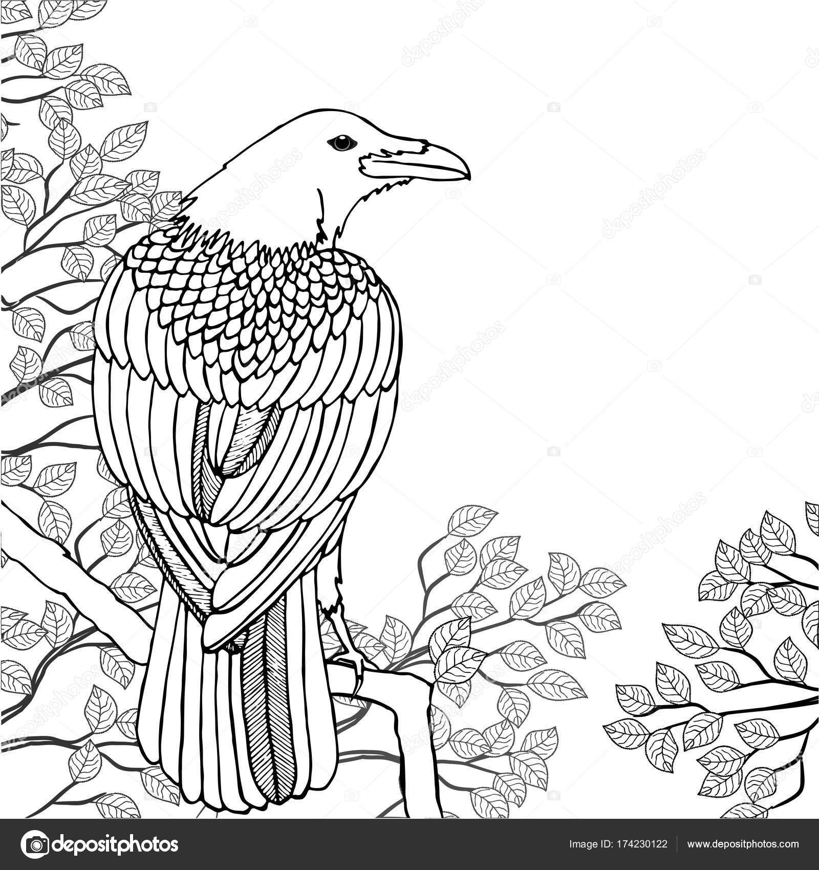 Arbol Con Ramas Y Hojas Para Colorear Ilustración De Vector