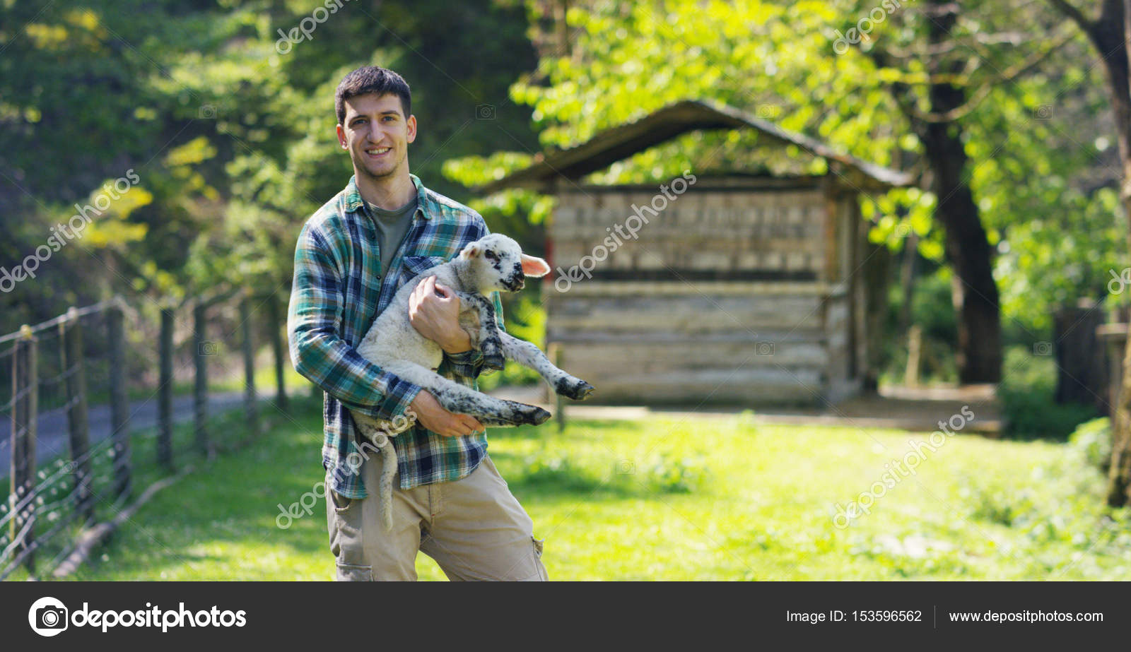 A Young Handsome And Smiling Farmer Holding A Lamb Young Cub Has