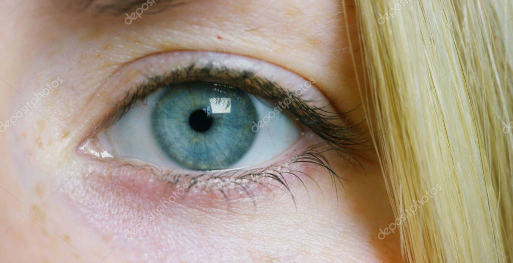 A young beautiful girl with big green-gray eyes, blonde straight hair and with freckles, a very close macro.