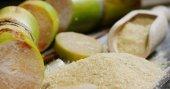 Eine Makroaufnahme einer Komposition aus Zuckerrohr, Zuckerwürfel und Zucker in den rohen Granulat. Konzept: ein Süßungsmittel, Natur, Energie, Säfte und Getränke