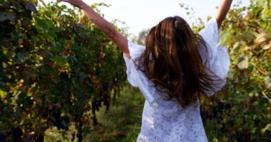 Slow motion of young caucasian brunette woman in white dress running and jumping of joy with raised arms between a vineyard rows and touching the plants of red grape on a sunshine in 4k (close up )