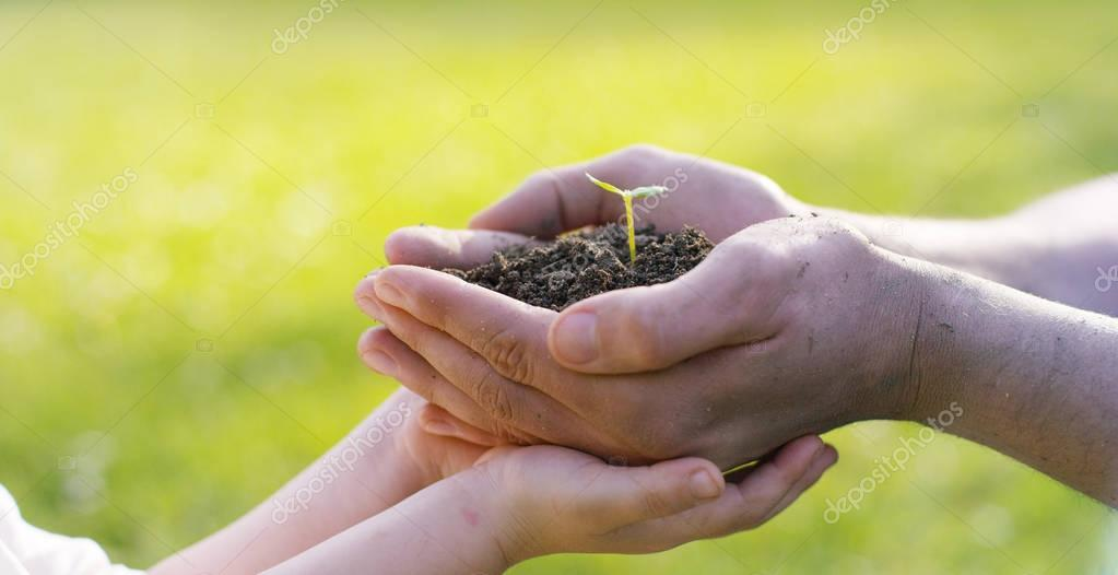 People hold a biological sprout of life in his labor hands with the ground for planting, on a green background, concept: lifestyle, farming, ecology, bio, love, tradition, new life.